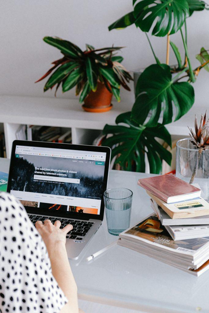 Pflanzen im Büro verbessern die Luftqualität.